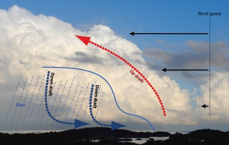 My impression of how the wind shear influenced the updraft and downdraft in the cloud, and helped the waterspout survive.