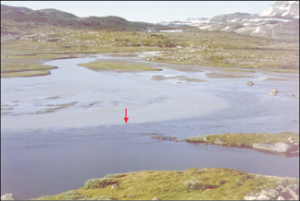 Figure 1: Rivermouth of glacial debris. The red arrow marks the boundary between the meltwater coming from the river and the lake water. Photo: S. O. Dahl Hardangerjøkulen, southern Norway
